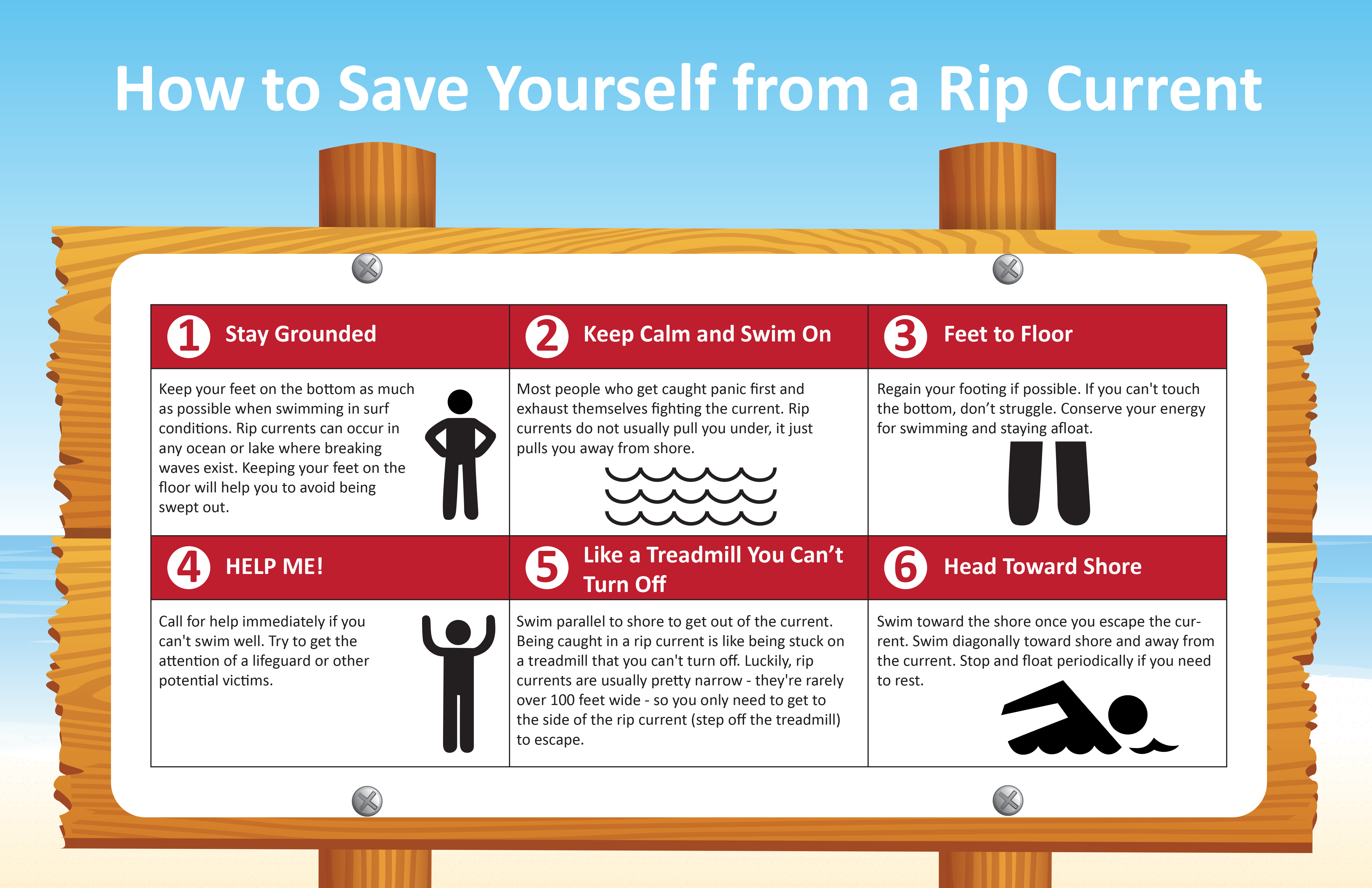 6 Steps for Staying Safe in the Surf [Infographic]